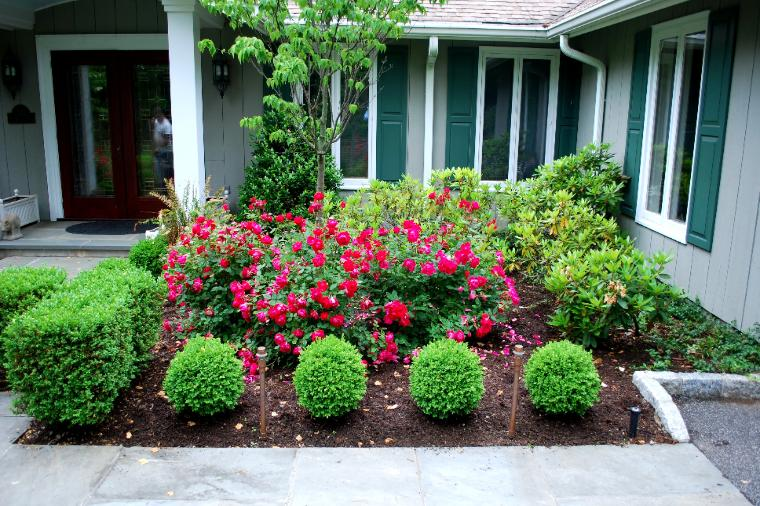 Landscaping With Boxwoods And Roses : Page title